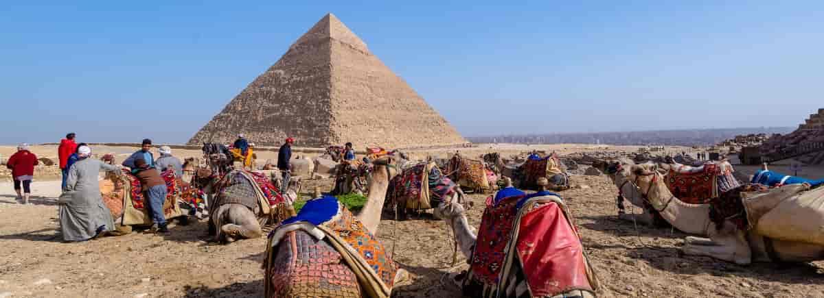 Info del estudio en Servicios Turísticos